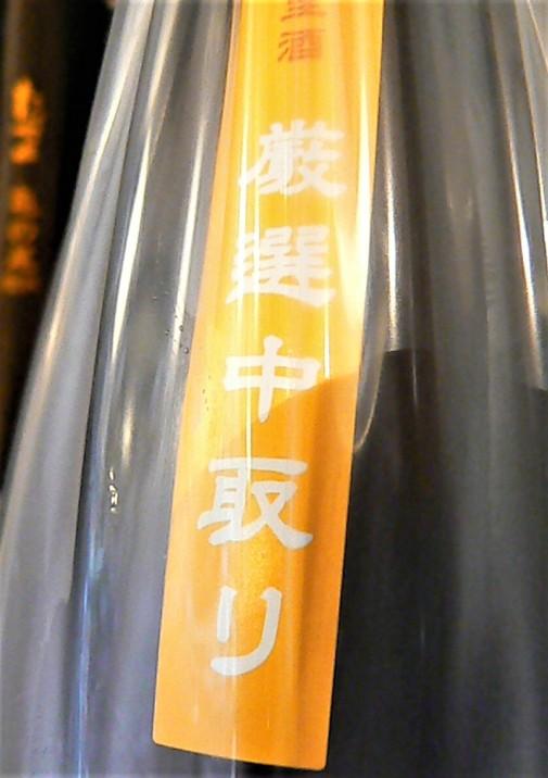 2020.8.たかちよカスタムオレンジ帯